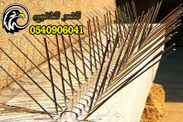 تركيب طارد الحمام بالمدينة المنورة-النسر الذهبي