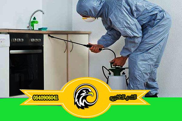 طرق مكافحة الحشرات ورش المبيدات الأمنة مكافحة حشرات بالمدينة المنورة