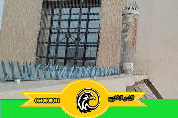 مكافحة الحمام في البيوت شركة تركيب طارد الحمام بالمدينة المنورة